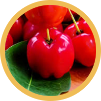 Owoce aceroli
